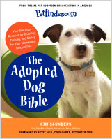Adopted-Dog-bible